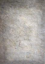 Plata no, 2001, técnica mixta sobre lienzo, 70 x 50 cm