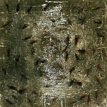 without title, 1999, mixed media on canvas, 100x100 cm