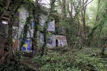 Das Swamp Hotel