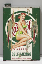 MISS CASTROL  Collage papier & technique mixte sur support bois 105 x 73  2020