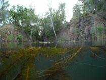 Gr. Ammelshainer See, am Einstieg