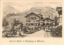 Wagen mit 8 offenen Längssitzen um 1900 vor dem Hotel