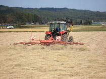 稲わら乾燥作業