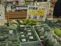 沖縄野菜は苦味の強いものが多い中で、比較的食べやすい食材です。