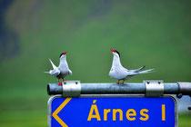 Krias an der Straße 643 bei Arnes