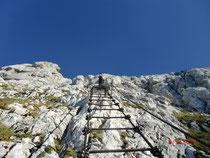 Das Paradestück des Klettersteiges die 60m lange Leiter Scala Pipan