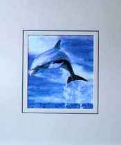Nr. 5/04  Delfin   Aquarell auf Büttenspezialpapier Fin Art 60x50 cm inkl. Karton - Passepartout   € 250.-