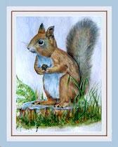 Nr. 5/14  A. Hörnchen  Aquarell auf Büttenpapier Fin Art 60x50 cm inkl. Karton - Passepartout, Metallrahmen Gold eluxiert, Glas mit Rückwand  € 215,-