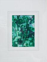 Nr.3/03 Blüten  Acryl auf Spez.Büttenpapier  80x60 cm inkl. Karton - Passepartout,Glas, Metallrahmen  Silber eluxiert u. Rückwand   Euro 320,-