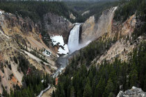 Lower Falls / Yellowstone National Park, Wyoming