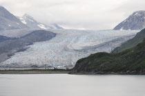 Galcier Bay Alaska