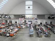 Fischmarkt in Leixoes, Hafen von Porto(Portugal)