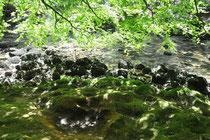 Gorge de l'Areuse, de Noiraigue à Boudry