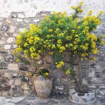 Nysiros, beim Kloster