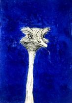 Strauß -Ultramarin . 100 x 70 cm . Pastel & Charcoal on Paper