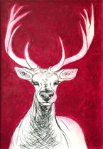 Deer Pink . 100 x 70 cm . Pastel & Charcoal on Paper