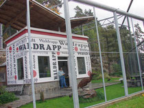 Verein Waldrapp Initiative Waidhofen an der Thaya