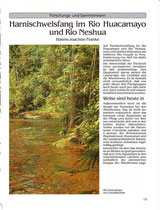 Dr. Hanns-Joachim Franke: Harnischwelsfang im Rio Huacamayo und Rio Neshua (Wels Jahrbuch 1993)