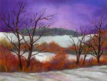 Winterlandschaft 2  Jan 2014