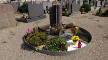 Gestaltung für die Stadt Gundelfingen