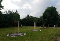 Gestaltung für die Stadt Ellingen