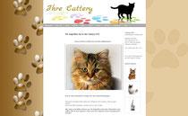 Kostenlose Vorlage für Katzenhomepage