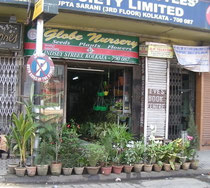 コルカタにある花屋さん。どこか欧米のお店の雰囲気があります。