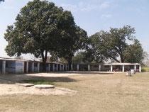 タタガットパブリック小学校です。校庭がとても広い学校です