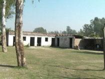 シュリドゥルガジ小学校。低い草の生えた校庭が愛らしい学校です。