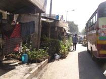 コルカタのシアルダー駅の近くにある園芸店の並ぶ通り。