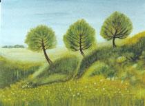 Drei Birken