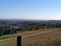 Unsere Aussicht, wenn wir Gassi gehen. Weit, weit hinten sieht man die Berner Alpen.