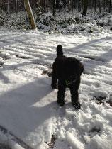 Schneeeeee!