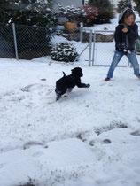 Schneeee und Domiiii!
