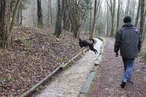 Oder ich kann wieder über das Bächli hüpfen und vor Mo davonrennen...