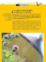 """dans le programme du festival """" sous le chapitô! """" 2009/ avec le Cheptel Aleikoum"""