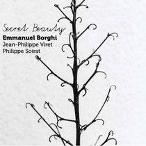Emmanuel Borghi (piano), Jean-Philippe Viret (contrebasse), Philippe Soirat - 2018
