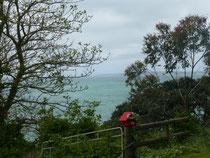 Le Pacifique vu depuis Orewa