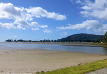 beach de Whangamata