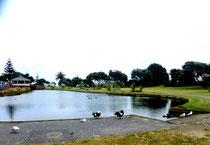 Paraparaumu beach - le parc