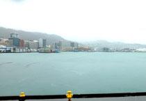 Wellington sous la pluie
