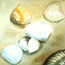 Muscheln I, Öl auf Leinwand, 90/90 cm, Barbara Rank, 300 Euro
