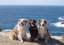Mikey, Pearl und Pete am Pointe du Raz