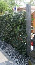 Schieferstele - Mobilane Fertighecke® - Pflanzfertige Heckenelemente - Fertiger Sichtschutz - Garten Bronder©