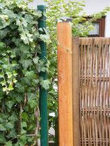 Holzpfosten - Mobilane Fertighecke® - Pflanzfertige Heckenelemente - Fertiger Sichtschutz - Garten Bronder©