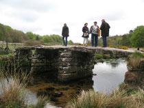 Brücke im Dartmoor