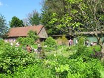 Garten der Familie Scheele