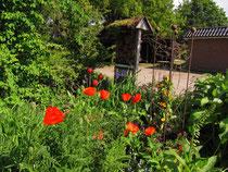 Mohn, rote Kugeln und ein Insektenhotel
