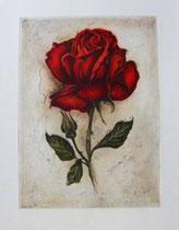 Kunstdruck, Rote Rose