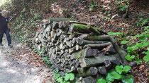 2 solcher Holzbeigen wollten abtransportiert und geholzt werden
